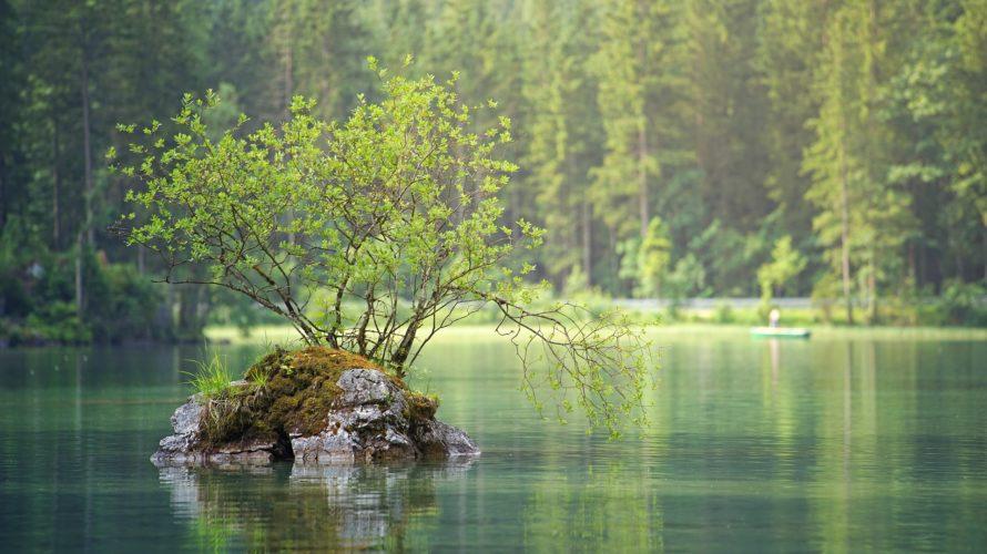 """【旅ログ・カナダ】西海岸で必ず行っておきたい絶景 """"Joeffry Lake"""""""